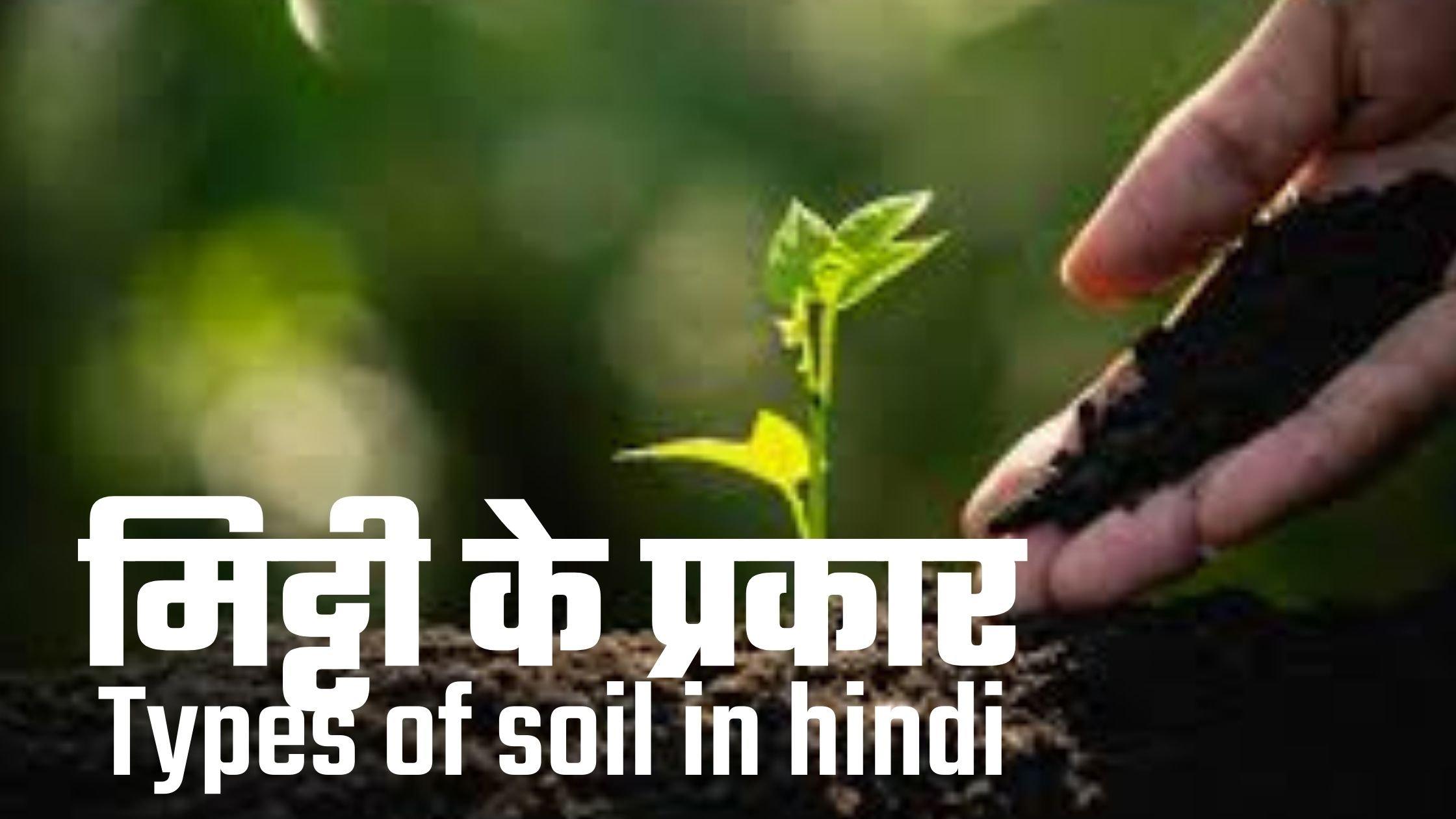 भारत की मिट्टी और मिट्टी के प्रकार | Types Of Soil In India